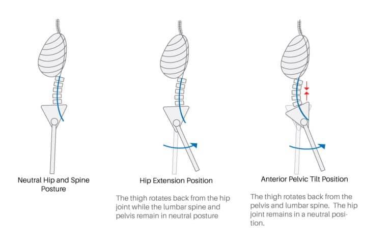estensione anca